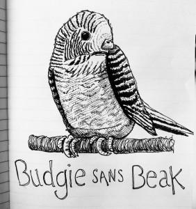 Budgie Sans Beak